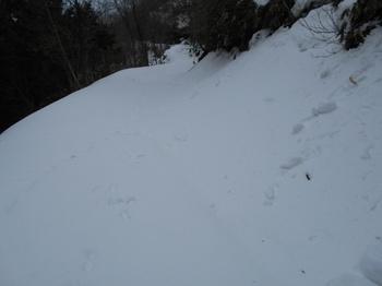 s_(19)_DSCN0708_平家ヶ岳-峠を過ぎて下り始める.jpg