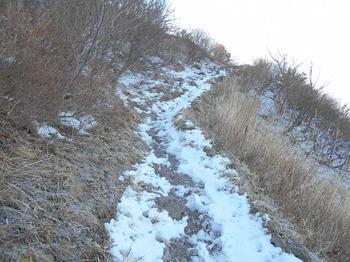 s_(3)_DSCN0708_男三瓶山の登山道の様子-実は登りでピッケル、下りでストックを使用.JPG
