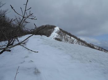 s_DSCN0777_上蒜山稜線上を歩く(2).JPG