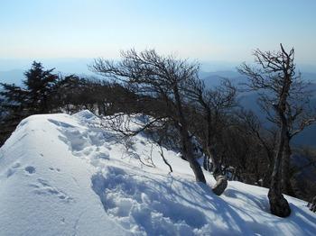 s_DSCN0801_釈迦ヶ岳-登ってきた登山路.JPG